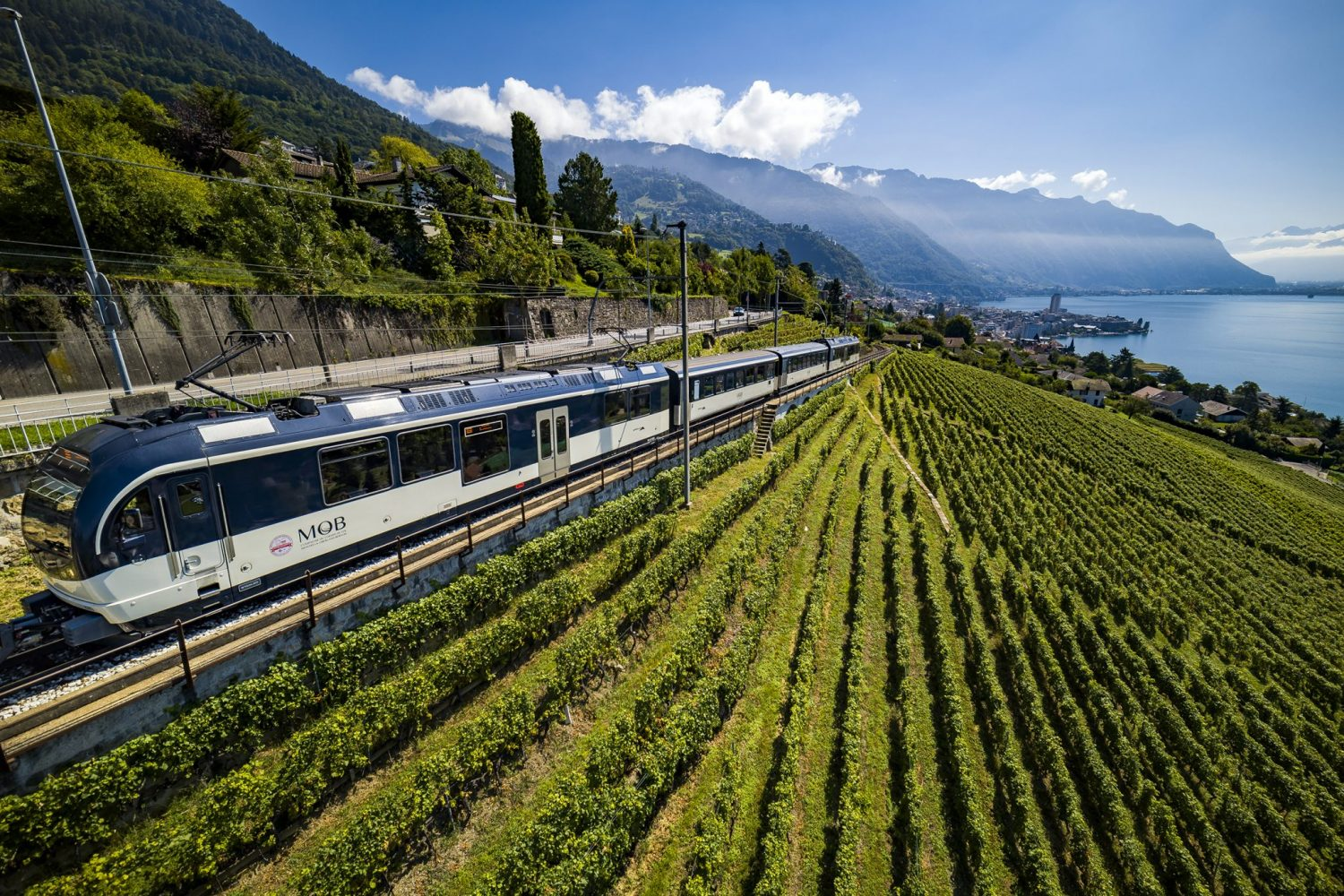 GoldenPass Panoramic in de wijngaarden bij Montreux